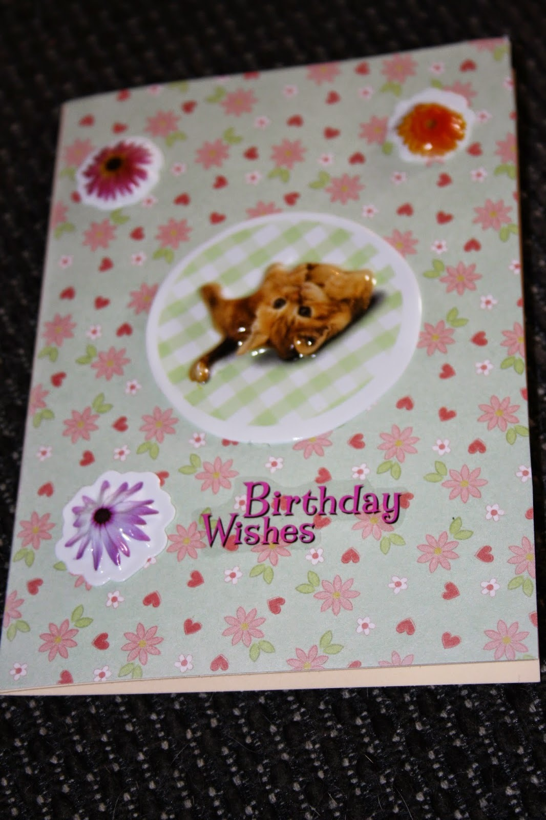 Cute Kitten Birthday Card