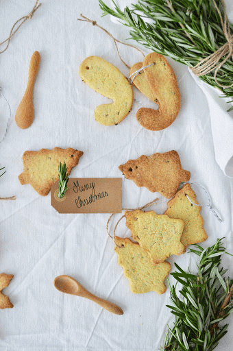 biscoitos de alecrim e laranja // rosemary and orange biscuits