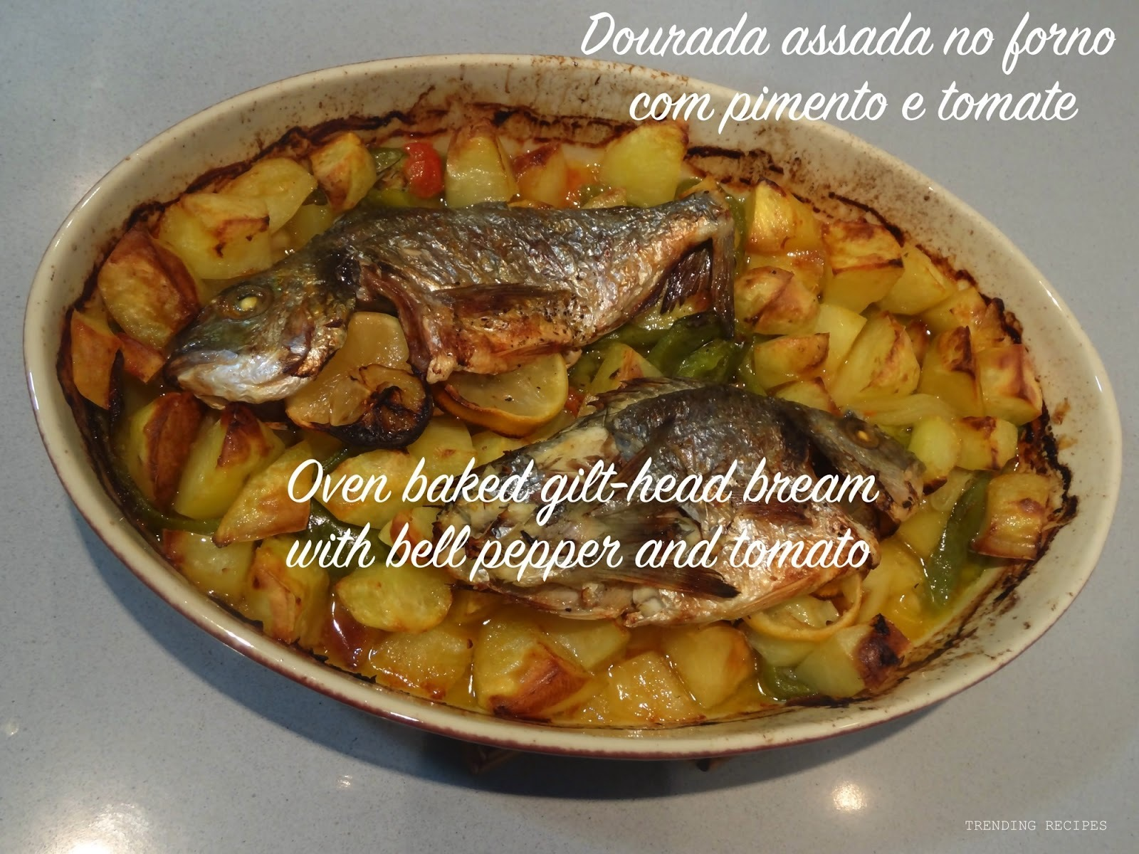 Oven baked gilt-head bream with bell pepper and tomato // Dourada assada no forno com pimento e tomate