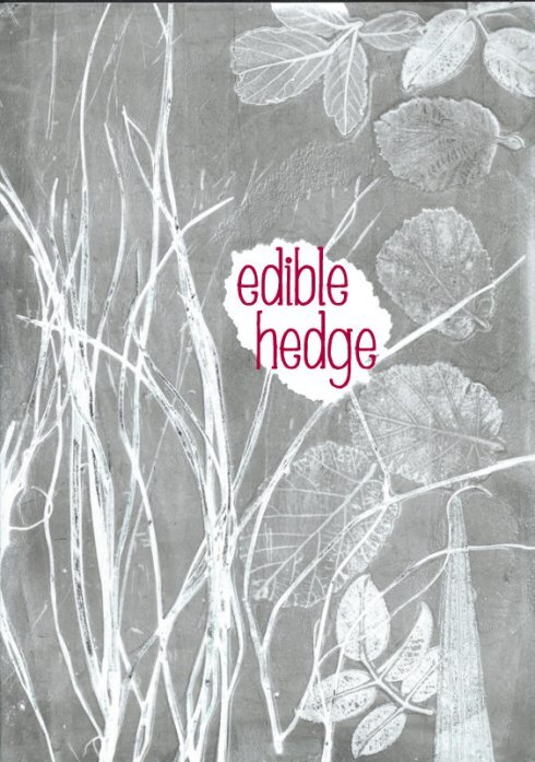 the edible hedge in September