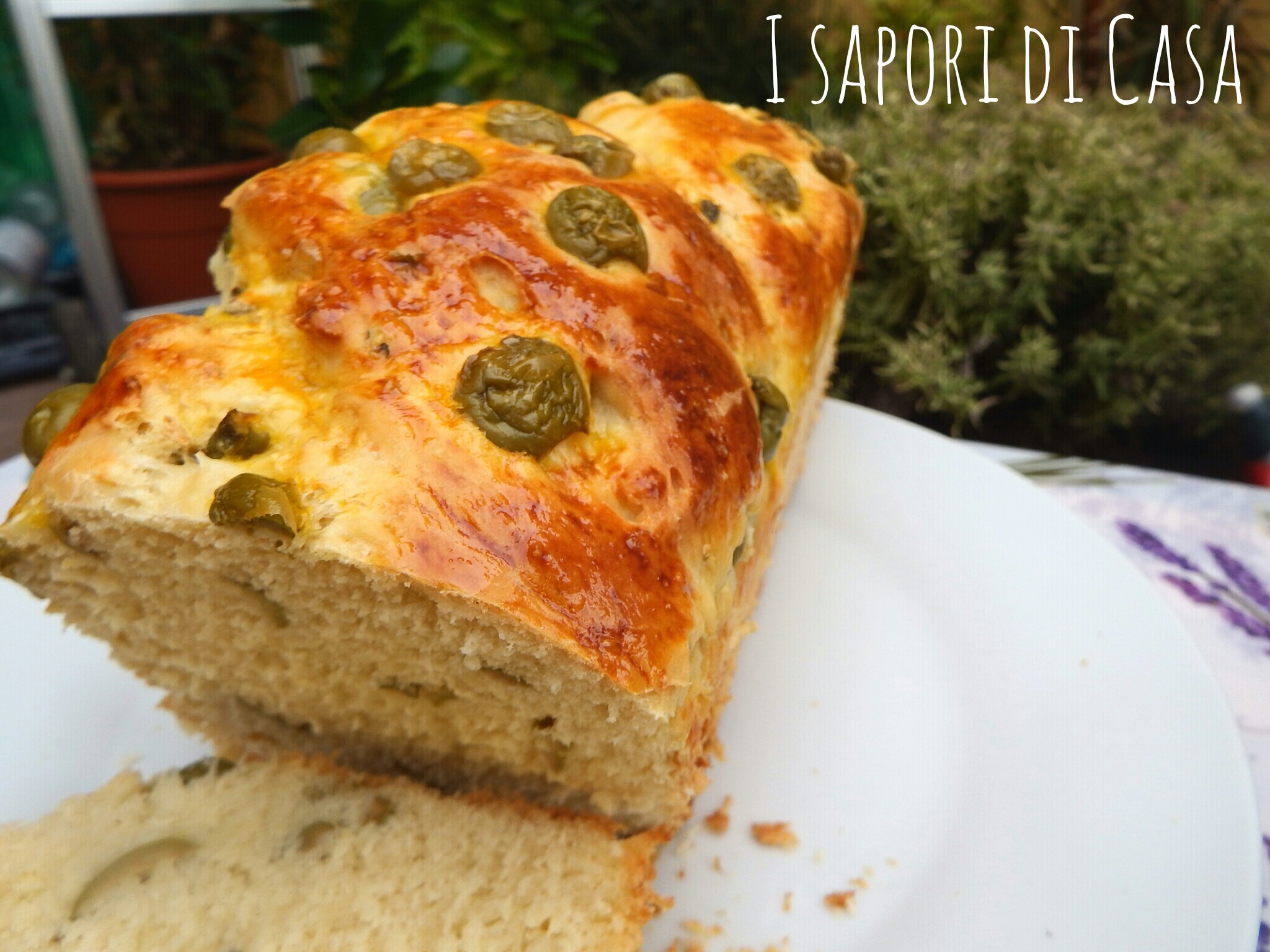 Pan brioches alle olive