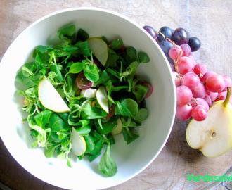 Ricette di insalata con soncino mytaste for Soncino insalata
