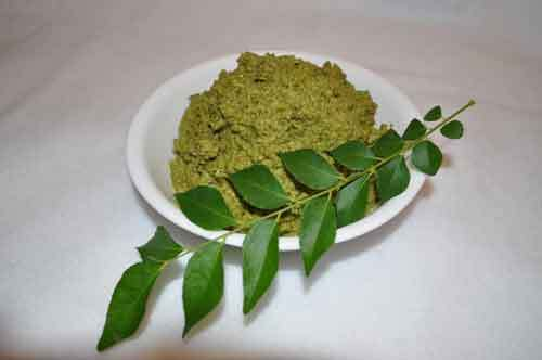 Curry Leaves Chutney (Kadi Patta Chutney)