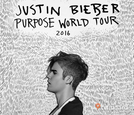 Justin Bieber Golden Circle Purpose Tour Biljett