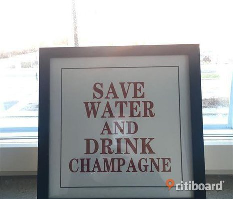 Tavla - Save water drink champagne