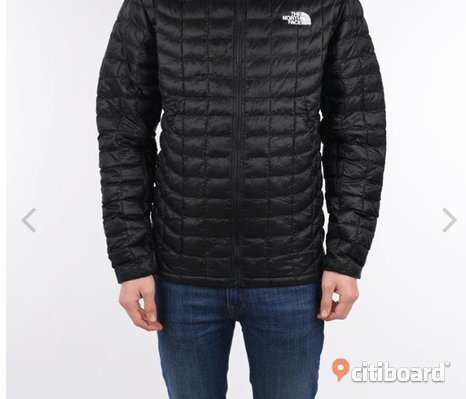 The north face M