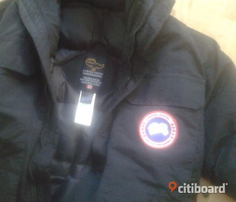 Canada Goose Expedition (Medium)