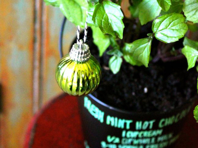 Homemade Hostess Gift: Mint Hot Chocolate Potted Plant