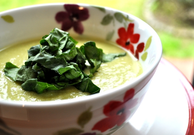 Soup Maker Recipe:  Asparagus and Spring Onion Soup