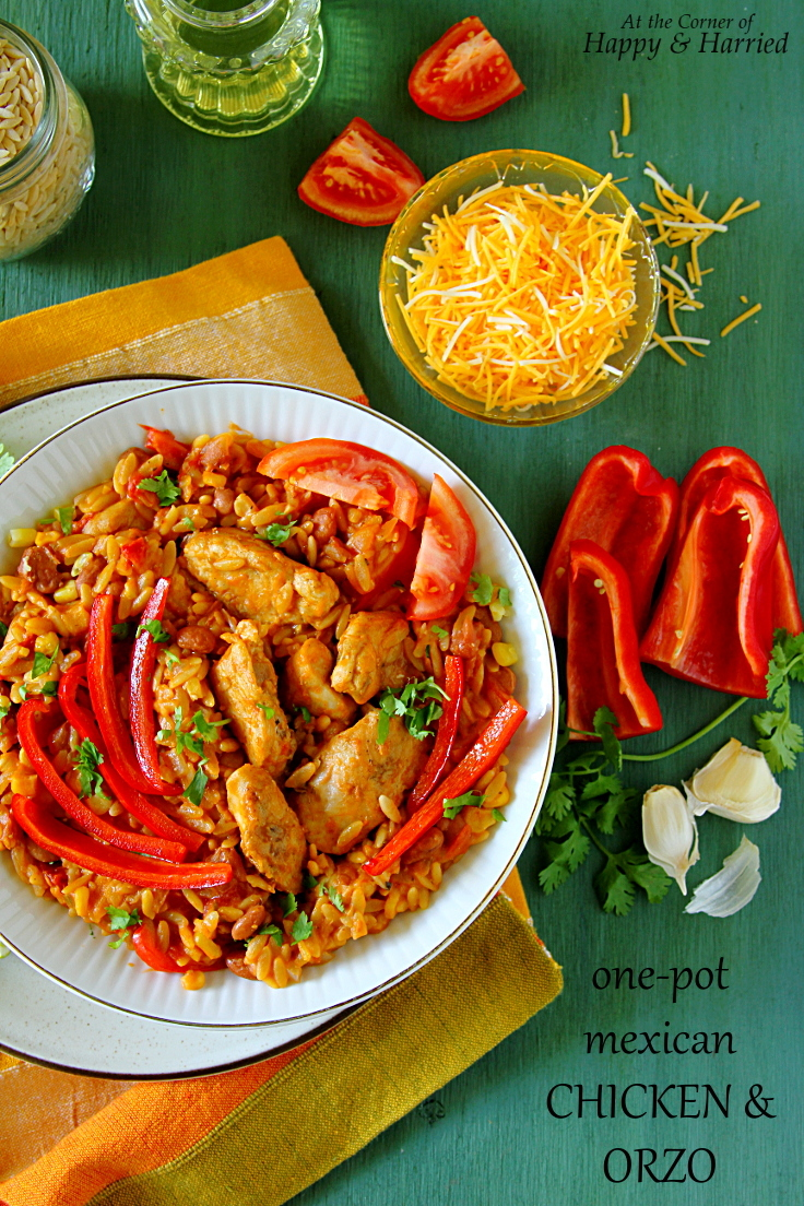 One-Pot Mexican Chicken & Orzo (And A Book – My Life Inscribed)