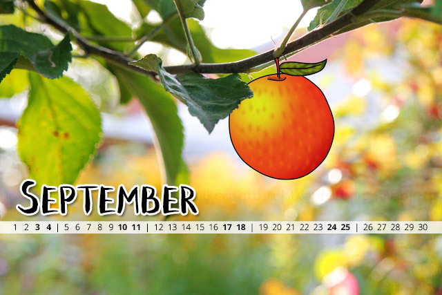 {Wallpaper} – September 2016