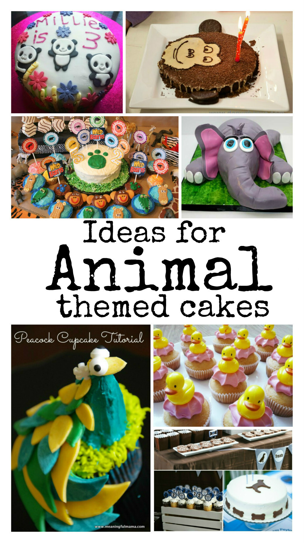 Kids Cake Decorating Ideas : Animal Cakes