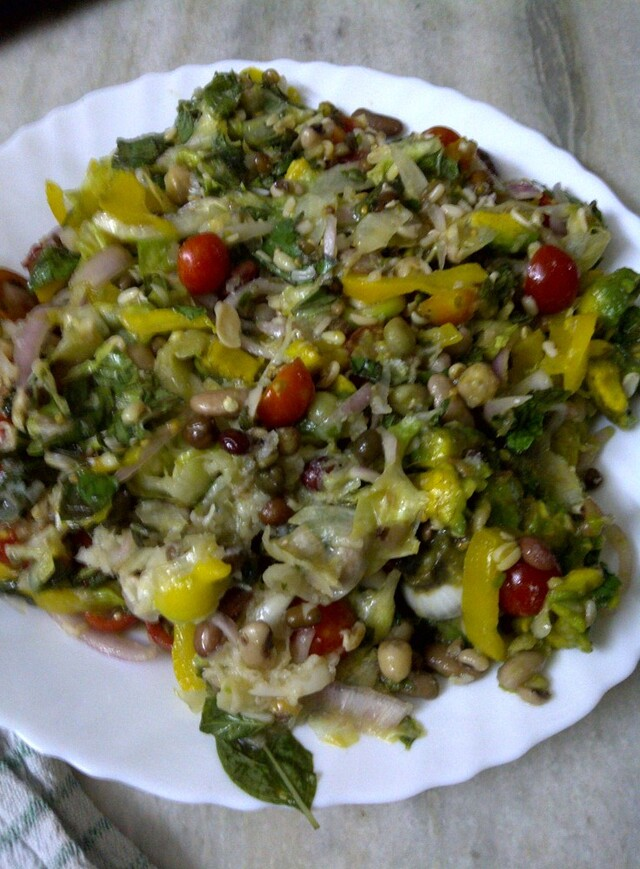 Fragrant Summer Salad of Sprouted Mixed Beans - Recipe from myTaste.co ...