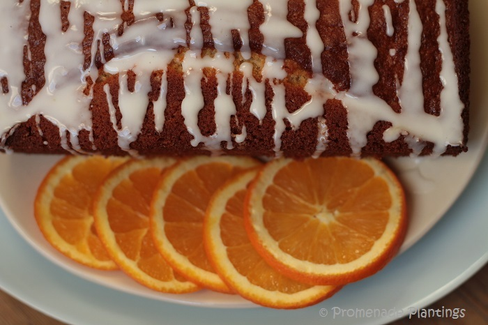 nigel slater lemon drizzle cake recipe