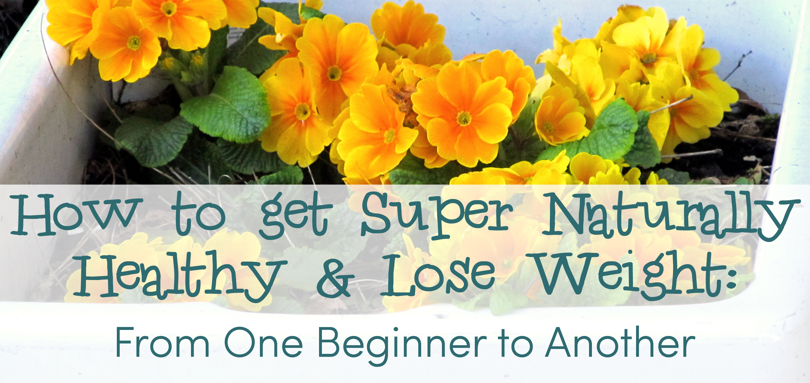 How to get Super Naturally Healthy & Lose Weight: From One Beginner to Another