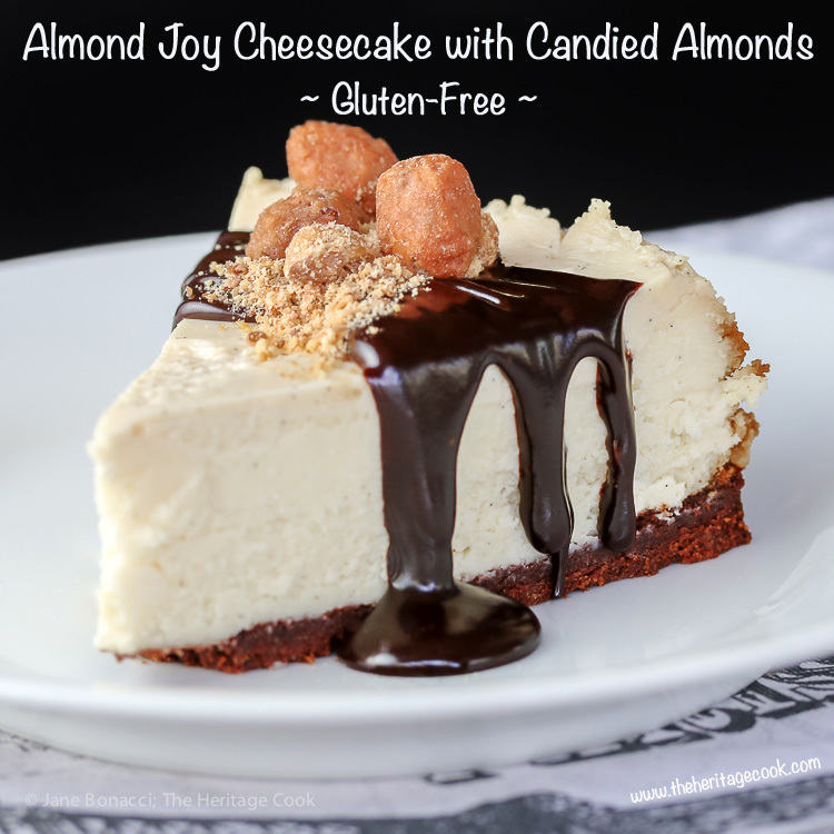 Almond Joy Coconut and Chocolate Cheesecake (Gluten-Free)