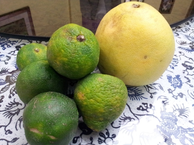 The Juice Experiment #1 Pomelo and Green Mandarin or Ponkan Orange