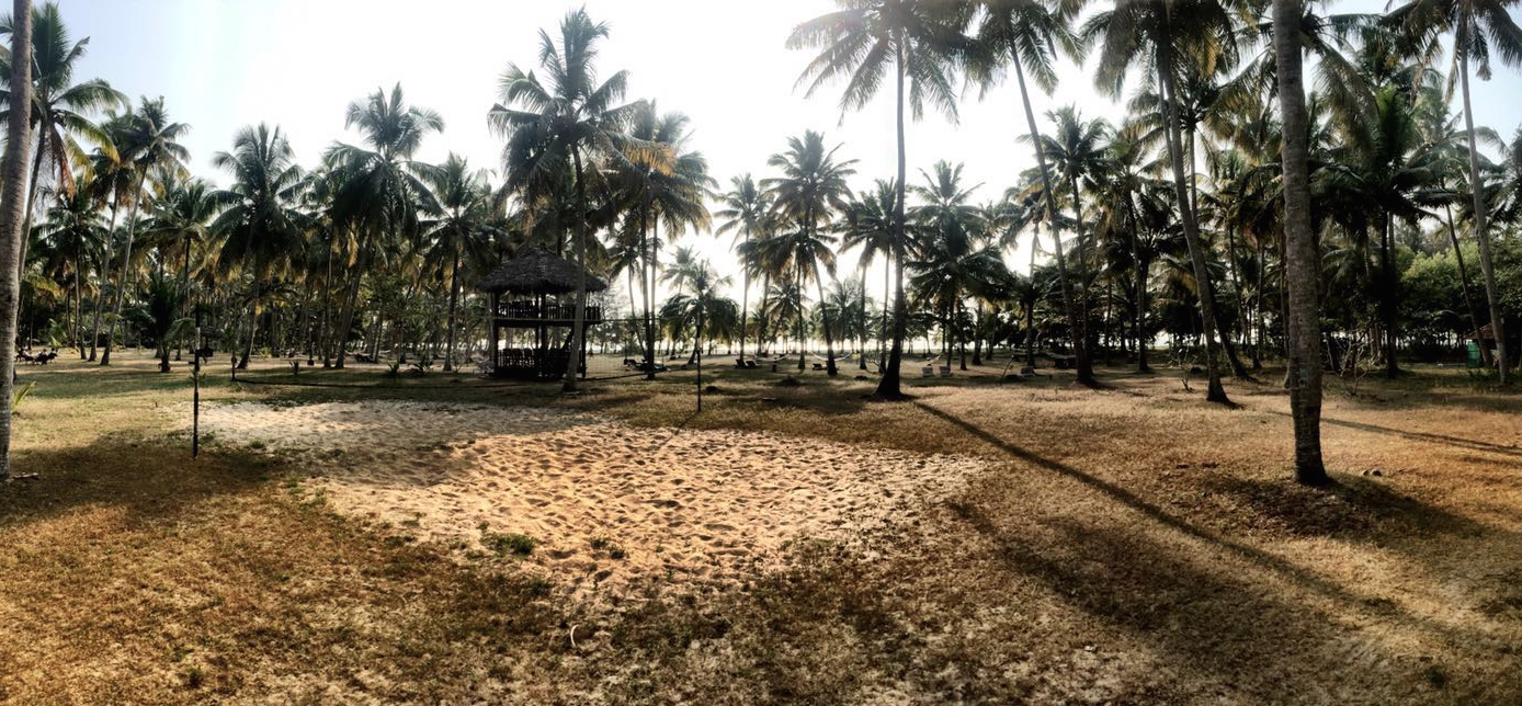 EXPLORING KERALA WITH CGH EARTH – MARARI BEACH