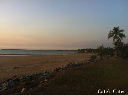 Travel Diary – Darwin Part 1: Markets and Barbecues and no personal injury