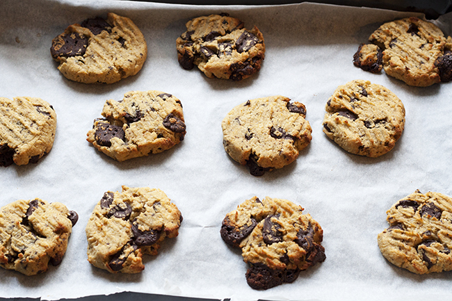 Healthy Coconut & Chocolate Cookie Recipe