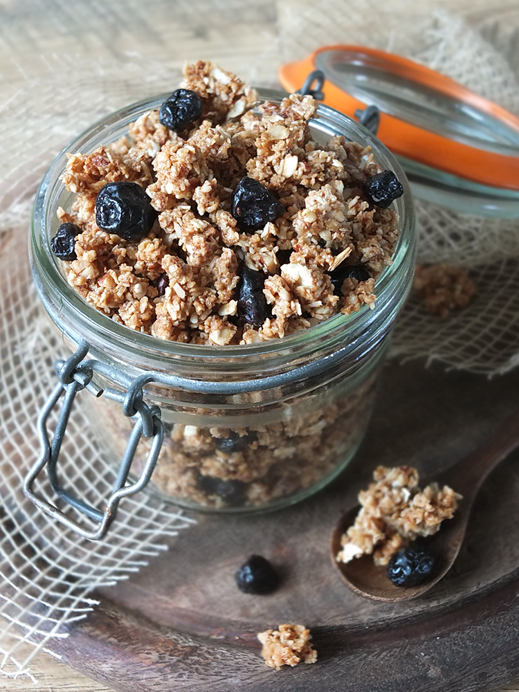 Coconut and Almond Granola Clusters with Blueberries