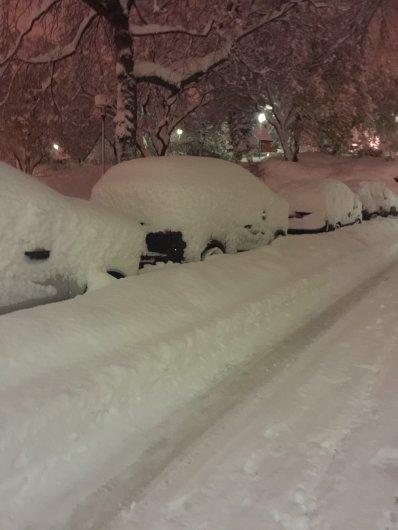 Vi skottar bort din snö!