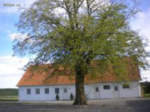 Gårdshus/Stuga Anderslöv, 8 p