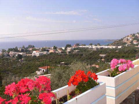 Hus med havsutsikt och pool, Aegina utanför Pireus, Grekland - Uthyres