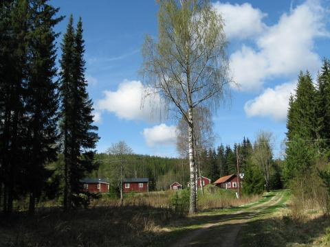 Duvenässätern Vildmark- och Kursgård, Sunnemo, Värmland - Uthyres
