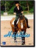 Hästliv - Hoppning, dressyr & praktiska tips