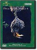 Fåglarnas värld 4