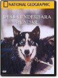 Dessa underbara hundar