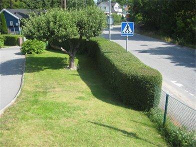 Trädgårdsarbete, Trädklippning & Klotterborttagning - Gurras Allservice
