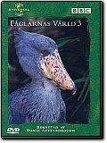 Fåglarnas värld 3