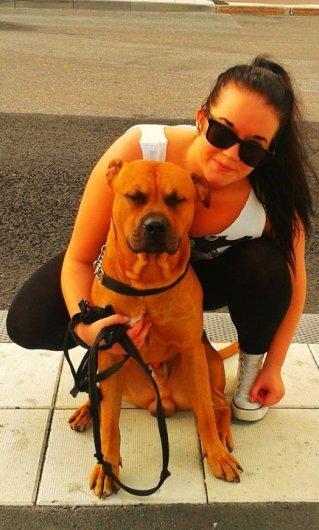 Behöver du en pålitlig hundvakt? Här är jag.