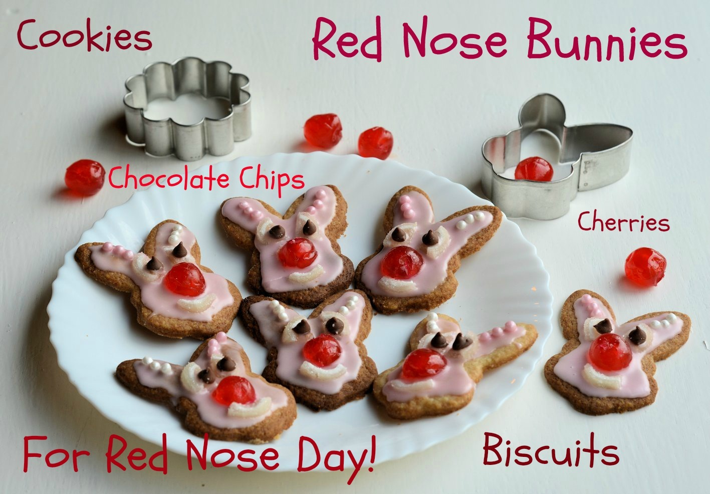 cake decorating ideas for red nose day