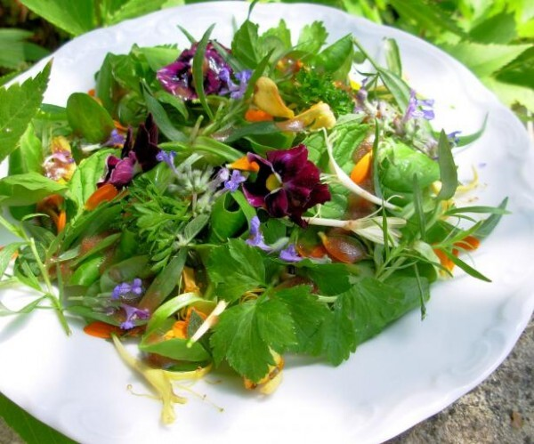 April Herbs on Saturday: Win a Cooking with Edible Flowers Book!