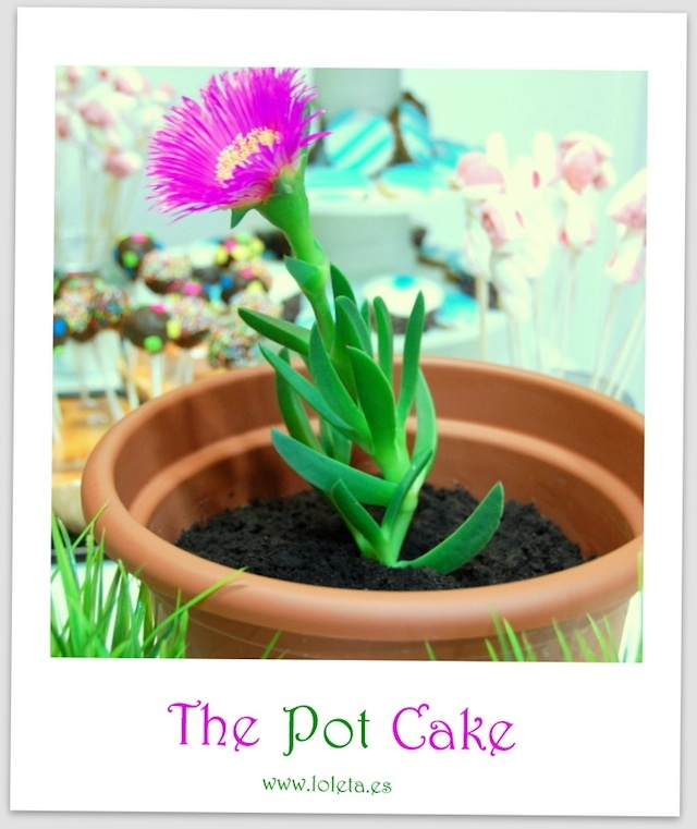 La tarta de la maceta (The Pot Cake)