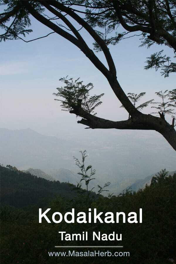 Kodaikanal Tamil Nadu South India and my honest experience