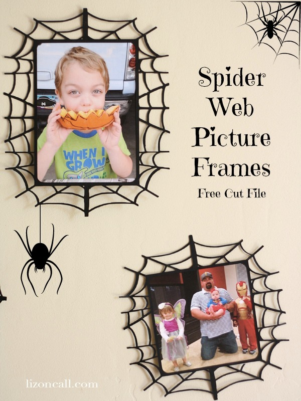 Spider Web Picture Frames