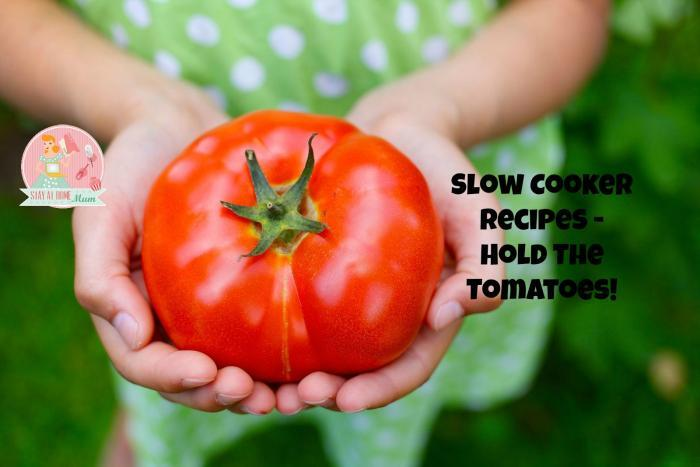 Slow Cooker Recipes – Hold The Tomatoes