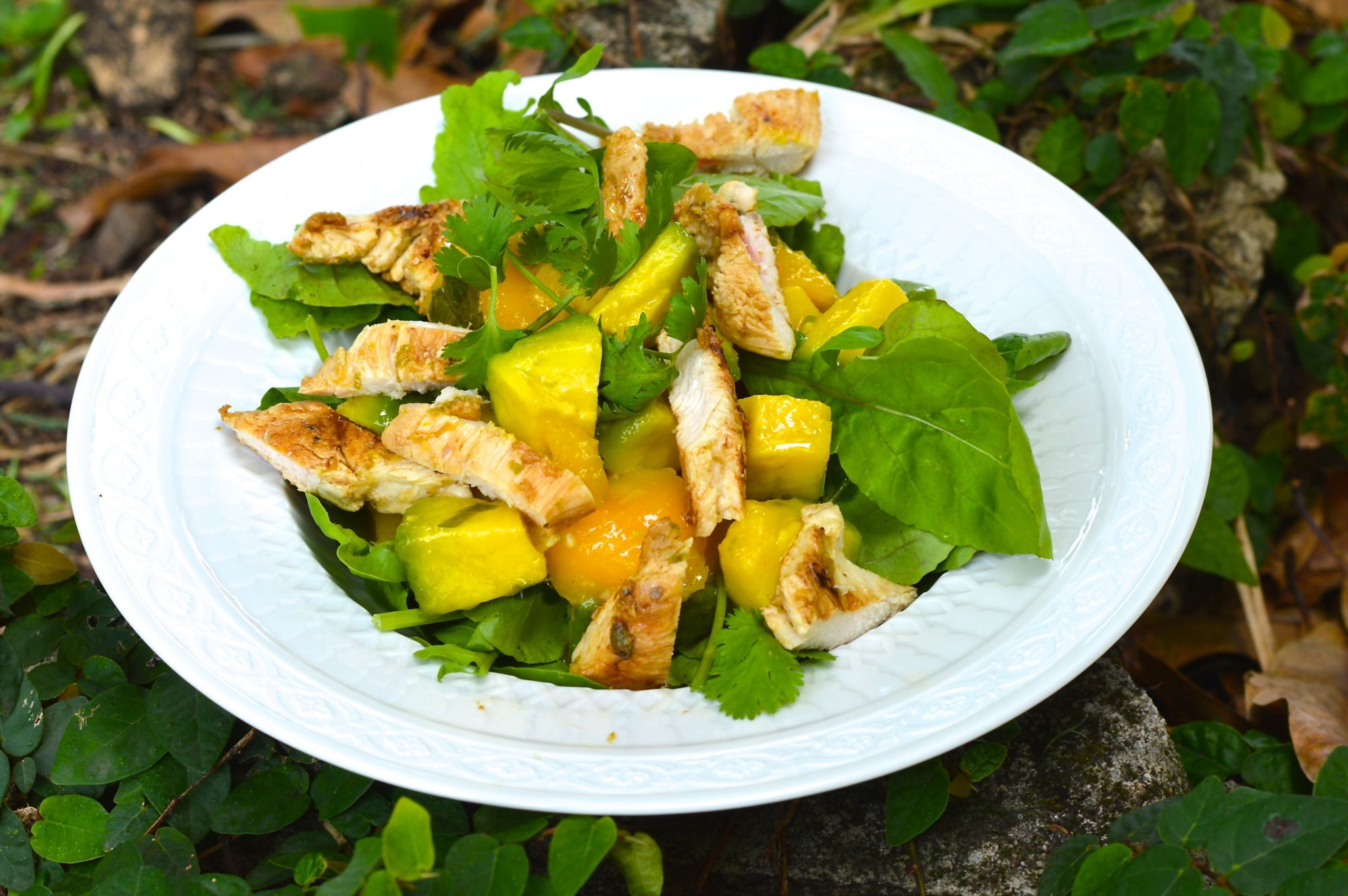 Grilled chicken salad recipe with mango and avocado