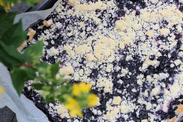 Czech Yeast Blueberry Cake With Crumble Topping