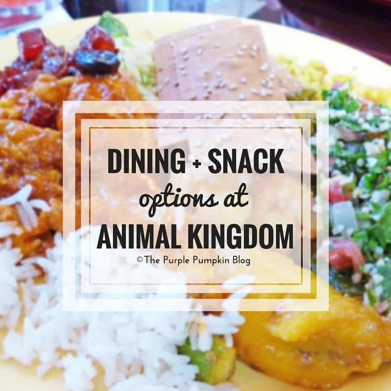 Dining + Snack Options at Animal Kingdom 56/#100DaysOfDisney