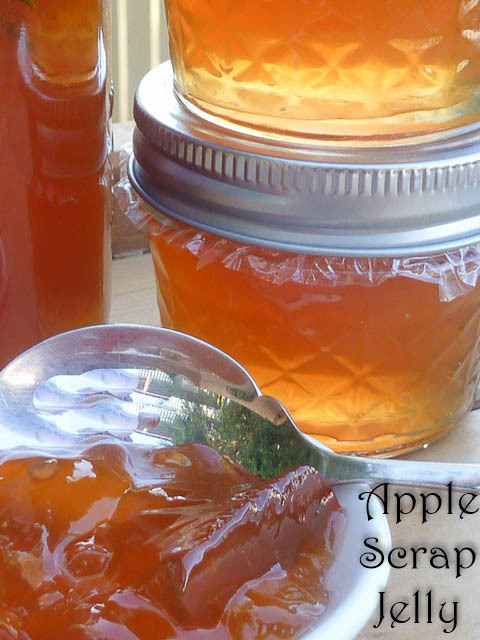Waste Not Want Not – Apple Scrap Jelly Recipe