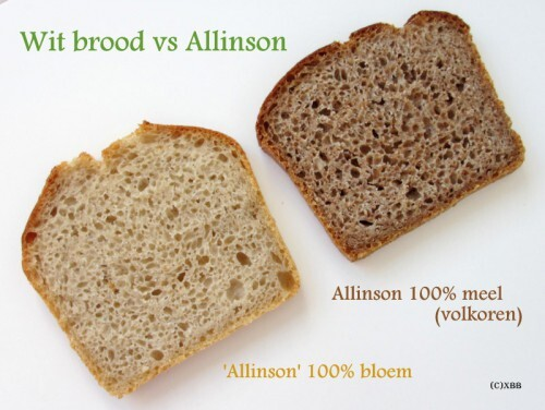 Wit brood vs Allinson