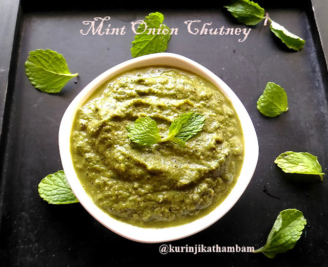 Mint Onion Chutney