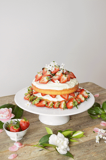 Strawberry Sponge Birthday Cake // Bolo 'Sponge' de Morango