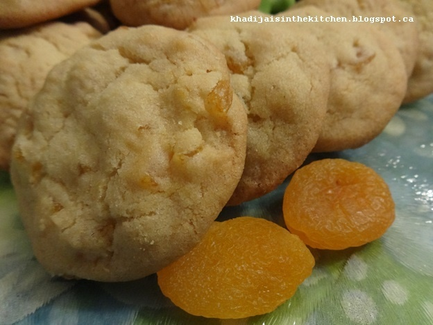 BISCUITS AUX ABRICOTS SECS / DRIED APRICOTS COOKIES / GALLETAS CON ALBARICOQUES SECOS / بسكوي بالمشمش المجفف