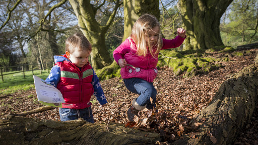Get out this February with the National Trust